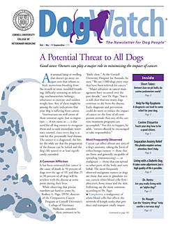 Give dogwatch magazine subscription save 54 online for Online magazine subscription services