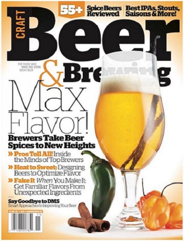 Give craft beer brewing magazine subscription save 25 for Online magazine subscription services